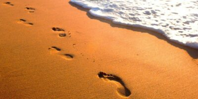 Des pas en avant…